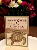 Keep Calm & Be A Turtle